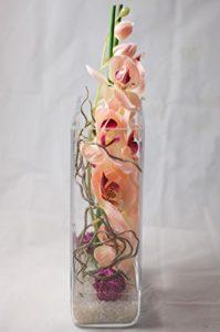Vase mit lachsfarbenen Phalenopsis
